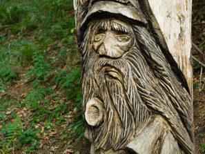 Koutecký pohádkový les